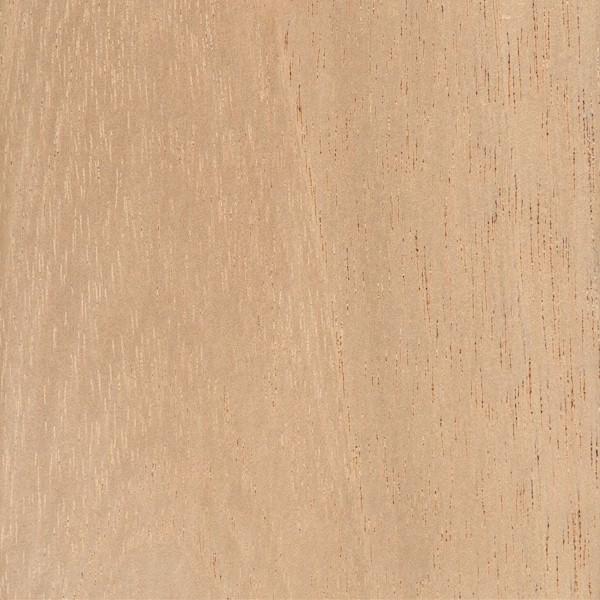 spanish-cedar
