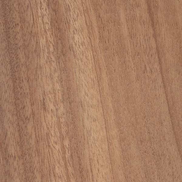 african-mahogany (2)