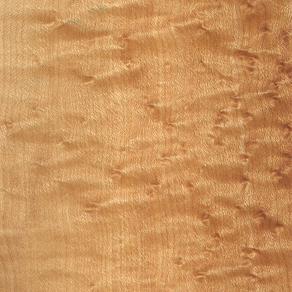 birdseye-maple (3)
